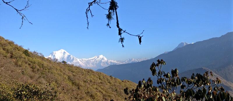 Khopra Ridge Treks